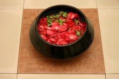 Potpourri. Top view of fresh rose petals pot-pourri Royalty Free Stock Photos