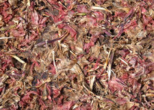 Potpourri abstract background. Abstract background of potpourri in red, pink and brown colours royalty free stock photography