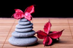 Potpourri arranged zen style Royalty Free Stock Photos