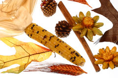 Potpourri of autum Indian corn, cinnamon stick,dried flowers & pine cones. Dried symbols of autumn on a white isolated background Stock Photo