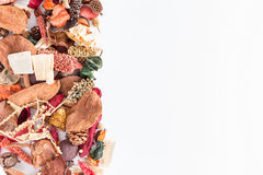 Potpourri border. With blank space for the text stock image