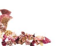 potpourri de lame de fleur sec par cadre photos stock