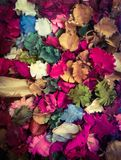 Potpourri. Dried Flowers is Royalty Free Stock Photos