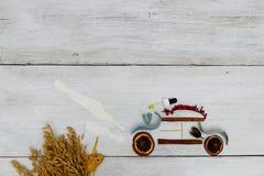 Potpourri eco samochód zdjęcie royalty free