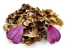 Potpourri with heart blossoms Royalty Free Stock Image
