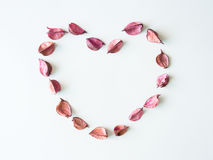Potpourri heart. Stock Images