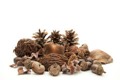 Potpourri Nature Stock Images