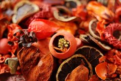 Potpourri in red/orange. A good mix of various fragrant ingredients Royalty Free Stock Photography