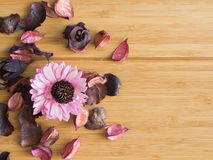Potpourri for relaxing. Royalty Free Stock Images
