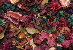 Potpourri texture. In red and orange tones Royalty Free Stock Images
