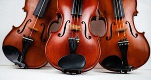 Potrójny skrzypcowy stawiający na tle zdjęcia royalty free