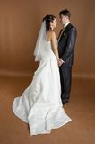 Potrait of bride and groom. Bride and groom posing in studio after wedding ceremony Royalty Free Stock Images
