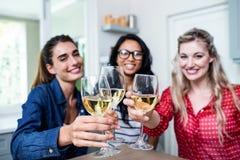Potrait de jeunes amis féminins heureux grillant le verre à vin Image stock