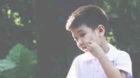 Potrait del ragazzo asiatico alla luce natral Immagini Stock