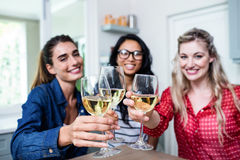 Potrait of happy young female friends toasting wineglass Stock Image