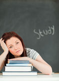 Potrait of a tired young woman studying Royalty Free Stock Photography