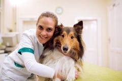 Veterinarian with dog at pet ambulance. Potrait of veterinarian with dog at pet ambulance Royalty Free Stock Photo
