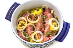 Potrawka z marynowanym mięsnym zakończeniem fotografia stock