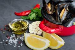 Potrawka z mussels, cytrynami, chili pieprzem i pikantność, Fotografia Royalty Free