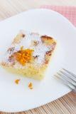 Potrawka z pomarańczowym zapałem Obraz Stock