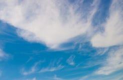 Potrebbe con il fondo della natura del cielo blu fotografia stock