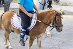 Potro del montar a caballo del niño fotos de archivo