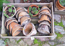 Pots. Wax pots in a box on cobblestone - at a florist royalty free stock photos