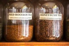 Pots alignés des herbes et des thés médicinaux photo stock