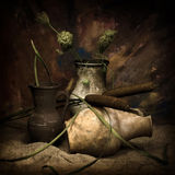 Pots and cane Royalty Free Stock Photo