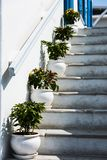 Pots climb the stairs on Mykonos. A line of white stone pots ascend the white stone steps in Little Venice, Mykonos, Greece Stock Image
