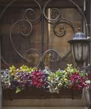 Pots with colored flowers on the window stock photography
