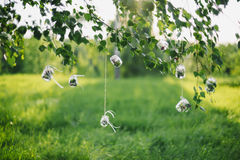 Pots décoratifs avec des fleurs accrochant sur des dentelles sur des feuilles d'arbre en soleil en été Photos libres de droits