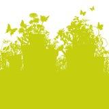 Pots d'herbe et de fleur Photographie stock libre de droits