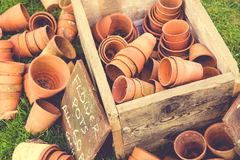 Pots d'usine Photographie stock