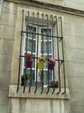 Pots de fleur accrochant par la fenêtre Image libre de droits