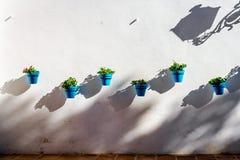Pots de fleur bleus sur un mur blanchi à Mijas Photographie stock