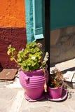 Pots de fleur sur Samos Photo libre de droits