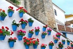 Pots de fleur d?corant sur le mur blanc dans la vieille ville de Marbella photographie stock libre de droits