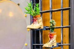 Pots de fleur dans chaussures enveloppées dans un vieux journal accrochant sur un trellis photos libres de droits