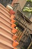 Pots de fleur en céramique sur des étapes d'appartement de maison de grès photographie stock