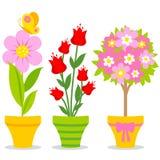 Pots de fleur mignons Images libres de droits