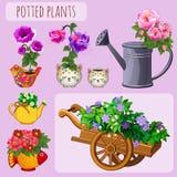 Pots de fleur peu communs sur un fond rose Images libres de droits