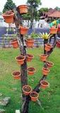 Pots de fleur sur l'arbre Photographie stock