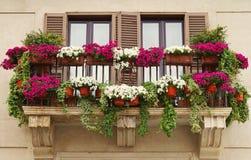 Pots de fleur sur le balcon d'un vieux bâtiment Photographie stock