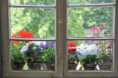 Pots de fleur sur le fenêtre-filon-couche Photo stock