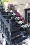 Pots de fleur sur les étapes d'une résidence de la savane photo libre de droits