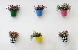 Pots de fleurs colorés Image libre de droits