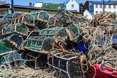 Pots de homard colorés images libres de droits