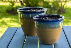Pots de jardin Photos stock