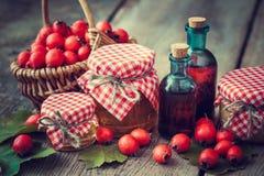 Pots de miel, bouteilles de teinture et mortier des baies d'aubépine Photographie stock libre de droits